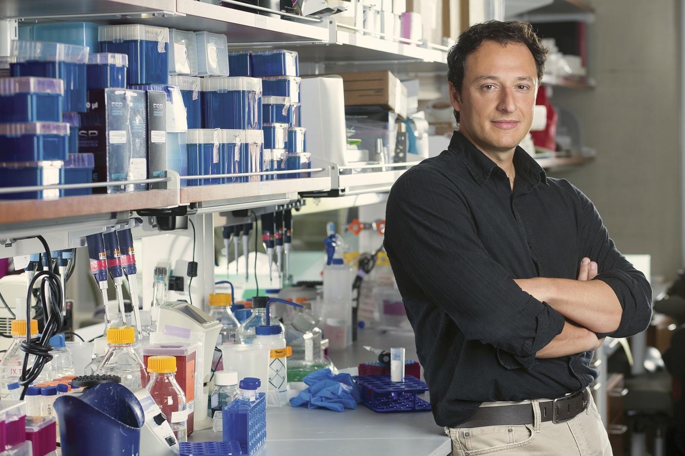 Alysson Muotri em seu laboratório.